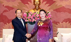 Chủ tịch Quốc hội tiếp các Đại sứ Nhật Bản, Campuchia