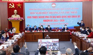 Giám sát chặt chẽ hồ sơ, lý lịch người ứng cử Đại biểu Quốc hội khóa XV