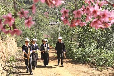 Phát huy giá trị văn hóa của các tộc người thiểu số trong bảo vệ môi trường miền núi