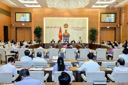 Ủy ban Thường vụ Quốc hội xem xét phê chuẩn việc bổ nhiệm Đại sứ