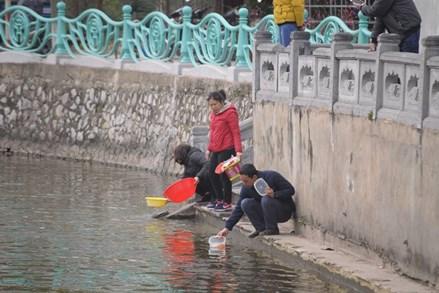 PGS Trần Lâm Biền: Phóng sinh vô lối, phúc ít họa nhiều