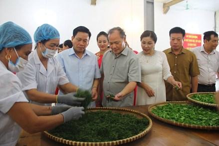 """Bộ NN&PTNT khảo sát thực hiện Nghị quyết TW 7 về """"Nông nghiệp, nông dân, nông thôn"""" tại Thái Nguyên"""