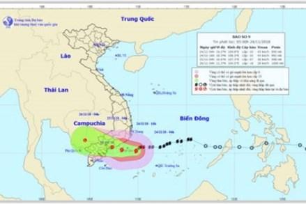 Chiều nay, tâm bão số 9 ngay trên vùng biển từ Ninh Thuận đến Bến Tre