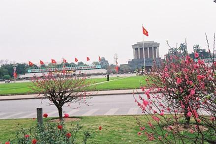 Việt Nam bước vào năm Kỷ Hợi với dáng đứng mới, thế đứng mới