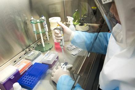 Việt Nam có thêm 5 ca bệnh nhiễm Covid-19