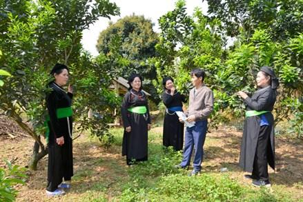 MTTQ các cấp tỉnh Tuyên Quang đẩy mạnh các phong trào thi đua yêu nước
