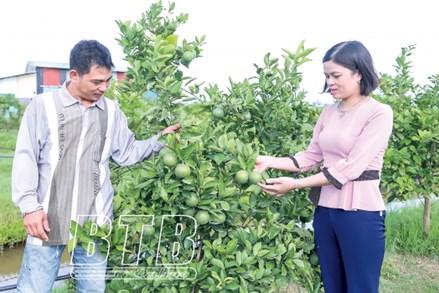 MTTQ huyện Vũ Thư chăm lo khối đại đoàn kết toàn dân vững mạnh