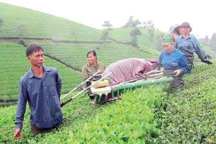 Tân Sơn thực hiện hiệu quả các chính sách dân tộc