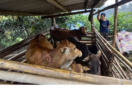 Phúc Lộc thực hiện hiệu quả các chính sách dân tộc