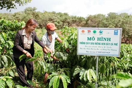 Cát Tiên (Lâm Đồng): Đầu tư phát triển toàn diện vùng đồng bào dân tộc thiểu số