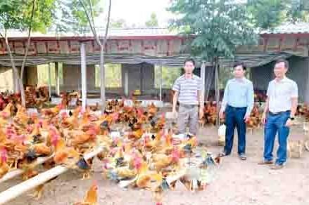 MTTQ huyện Hưng Hà phát huy vai trò đội ngũ cán bộ Mặt trận