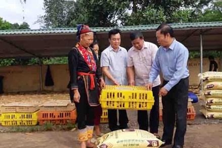 Quảng Ninh:Phát triển bền vững vùng đồng bào dân tộc thiểu số