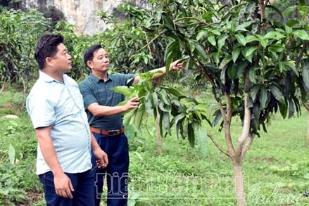 MTTQ các cấp tỉnh Điện Biên tham gia xây dựng Đảng, chính quyền
