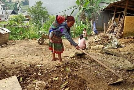 Giảm nghèo vùng dân tộc thiểu số: Nhìn từ Si Ma Cai