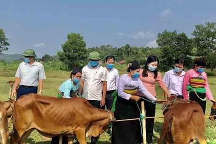 MTTQ các cấp tỉnh Thanh Hóa tham gia xây dựng Đảng, chính quyền trong sạch, vững mạnh