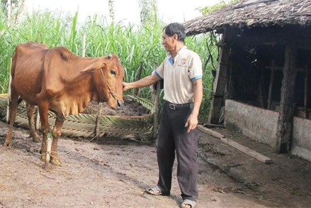 Kinh nghiệm giảm nghèo bền vững ở Trà Vinh