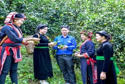 Tuyên Quang: Nâng cao đời sống vùng đồng bào dân tộc