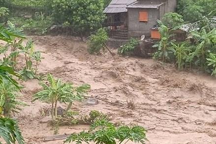 Ban Cứu trợ Trung ương hỗ trợ 1 tỷ đồng cho các gia đình bị thiệt hại do cơn bão số 3 gây ra