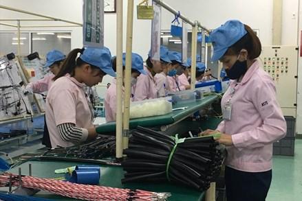 Năng suất cao - An toàn lao động - Thu nhập tốt