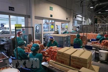 Doanh nghiệp Việt tại LB Nga vượt qua cơn bão COVID-19