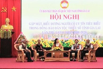 Gia Lai: Hội nghị biểu dương người có uy tín, tiêu biểu đồng bào dân tộc thiểu số