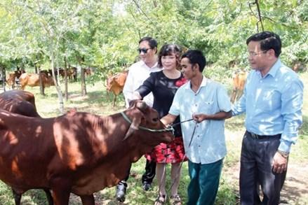 Ninh Thuận: Triển khai nhiều hoạt động hỗ trợ cho hộ nghèo