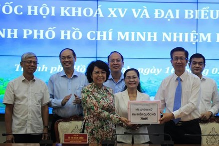 MTTQ thành phố Hồ Chí Minh: tiếp nhận 224 hồ sơ ứng cử đại biểu Quốc hội và đại biểu HĐND