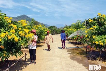 """Ninh Thuận: Lan tỏa cuộc vận động """"Toàn dân đoàn kết xây dựng nông thôn mới, đô thị văn minh"""""""