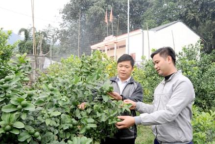 Hàm Yên giảm nghèo để xây dựng nông thôn mới