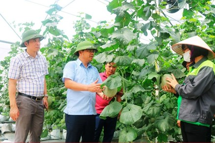 Người Bắc Giang xây dựng nông thôn mới