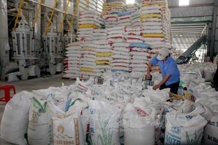 Hà Nội gửi tặng thành phố Hồ Chí Minh 5.000 tấn gạo, tỉnh Bình Dương 1.000 tấn gạo
