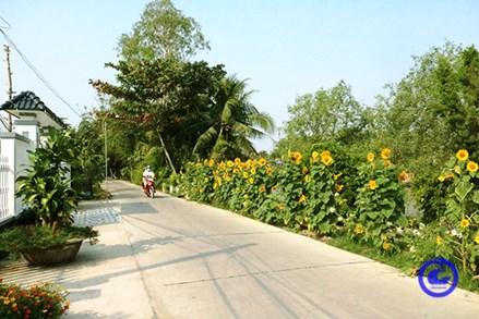 Xây dựng nông thôn mới ở xã vùng Đồng Tháp Mười