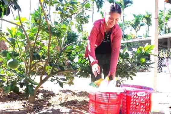 Phụ nữ Quảng Ngãi với phong trào bảo vệ môi trường