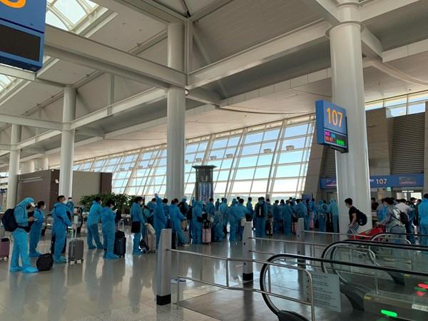 Đưa 310 công dân Việt Nam từ Hàn Quốc về nước