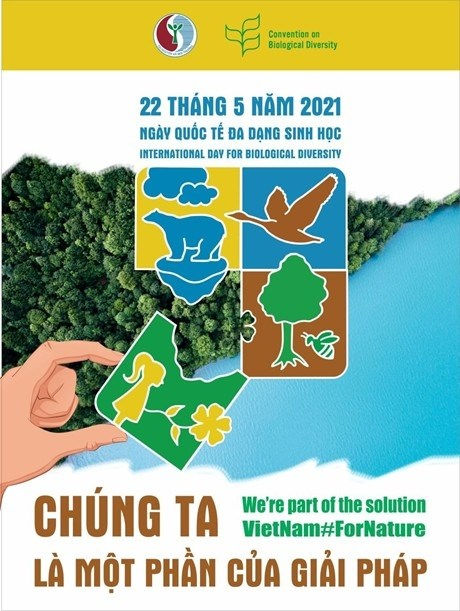 Tổ chức các hoạt động hưởng ứng Tháng hành động vì môi trường